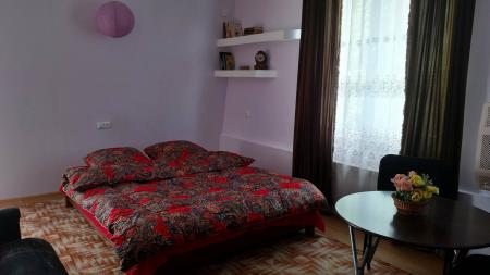 1 Bedroom Apartment on Vaja-Pshavela  for daily rent